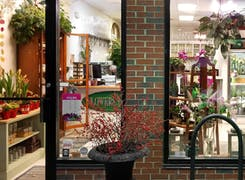 The view from the outside, looking in, at our bright, colorful storefront